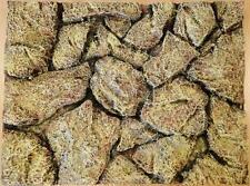 Stone Rock Wall Aquarium Fish Tank Vivarium Reptile 3D Background 60x45cm BG9007