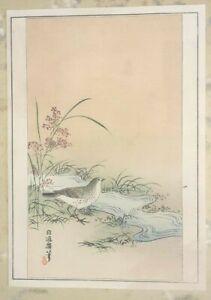 BIRD BESIDE A STREAM - ORIGINAL JAPANESE WOODBLOCK PRINT - 'Kacho-e'
