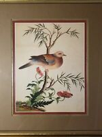 Framed Matted Vintage Bird Print