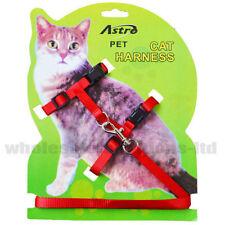 Laisses et harnais rouge pour chat
