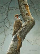 "Flicker on Apple Tree - By Robert Bateman 99 S/N Giclee on Canvas Size 12""x16"""