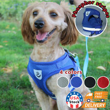 Small Dog Harness Breathable Mesh And Leash Set - Vest Chest Strap For Small Dog