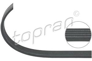 BMW Ribbed V-Belt 5PK1023 Climate Compressor X5 E53 M62 11287507626