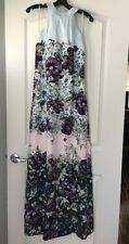 $429 NEW Ted Baker Entangled Enchantment Blue Floral Maxi Dress, Ted sz 2, US 6