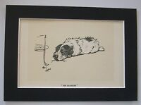 Terrier Dog Print Cecil Aldin The Blighter Lay In Wait 1934 Bookplate 5x7 Matted