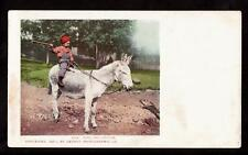 1901 boy rides kind and gentle donkey postcard