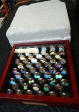 Holographic Gold-Plated U.S. STATE Quarters Collection 56 Coins W/Case UNCIRC