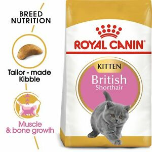 Royal Canin Kitten British Shorthair Dry Cat Food FREE NEXT DAY DELIVERY