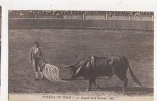 Corrida de Toros Despues de la Estocada Spain Vintage Postcard 480a