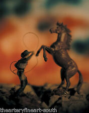 DAVID LEVINTHAL 'The Wild West' 1994 SIGNED Color Photograph 11 x 8 in. #9/10