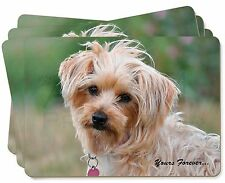 Yorkshire Terrier 'Yours Forever' Picture Placemats in Gift Box, AD-HV2yP