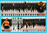 2019 Topps WWE RAW w/ Hometown Heroes & Bronze - Pick One - Fill Your Set