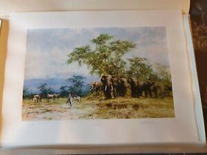 """David shepherd """"Amboseli"""" Limited Edition Print"""