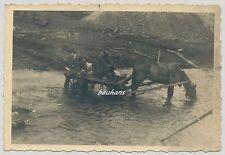 Foto Wehrmacht Pferdegespann im Fluss  2.WK  (f623)