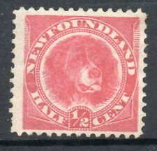 Newfoundland: 1887 Newfoundland Dog ½c. SG 49 unused