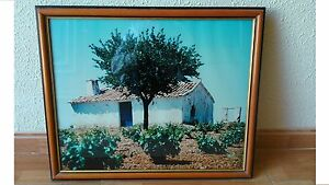 Picture Photograph Rural Landscape Ya Enmarcado. Decoration Distressed Rustic &