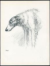 BORZOI HEAD STUDY LOVELY IMAGE VINTAGE 1930'S DOG ART PRINT by KF BARKER