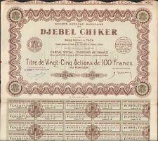 Titre 25 actions: DJEBEL CHIKER (TAZA MAROC) (P)