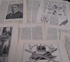10 sheets Vintage Encyclopedia pages. Scrap book, Art Projects, Crafting, Cards