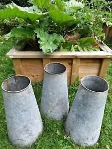 Vintage classic rare set of 3 rhubarb forcers planter galvanised original scarce