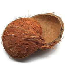 2 Half Coconut Shell Natural, Free Shipping great for Partys,Hermit Crab bowls
