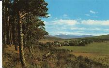 postcard Scotland  Tomintoul -1200ft above sea level  unposted  PT36658