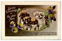 Antique RPPC real photograph postcard card Loving Greetings To Dear Son dogs