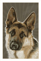 Dogs German Shepherd Large Breed GSD KD Explosive Guard Dog Art Poster - 12x18
