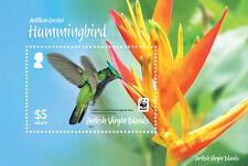 Br Virgin Is 2014 Hummingbirds 1v MS MNH