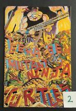 Teenage Mutant Ninja Turtles Book 34