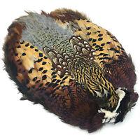 RINGNECK PHEASANT SKIN - Hareline Fly Tying Feathers Ring-Neck Pelt NEW!