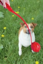 "Dog ball thrower large, Launcher, 20"" inch Red with Ball  + Throwing ball"