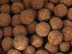 Tiger Nut Pop-ups 12mm Carp Fishing Boilies Round Baits Tigernut