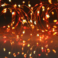 Sunset Micro Lights Copper Wire (100 Red, Orange, Yellow LEDs) with controller