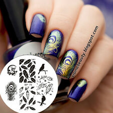 BORN PRETTY Nail Art Stamp Template Image Stamping Plate Bird Dragon Feather #75