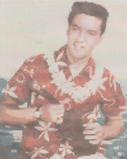 Elvis  in Hawaii Counted Stitch Kit