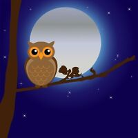 "perfect 30x30 oil painting handpainted on canvas ""An owl and moon""@N1389"