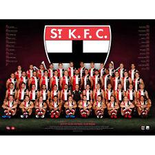 AFL 2017 Team St Kilda Saints POSTER 60x80cm Aussie Football League Players