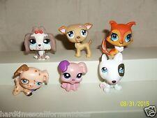 Littlest Pet Shop Lot of 6 Dogs Collie 2742 Greyhound 498 Shih Tzu 2130 More