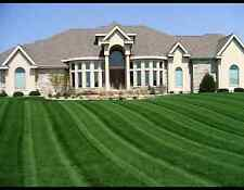 5 LBS KENTUCKY 31 TALL FESCUE GRASS SEED LAWN OR PASTURE GRASS DROUGHT TOLERANT