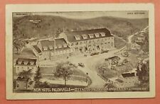 DR WHO 1924 NEW HOTEL PALENVILLE NY PC 147292