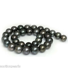 """Tahitian South Sea Pearl  Necklace 18""""  14kt gold clasp 14 - 11mm"""