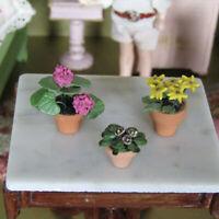 Dollhouse Miniature ARTISAN FLOWER PLANTS Garden Patio Handmade Artist Polymer