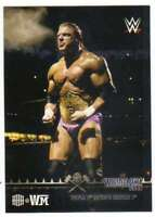 2015 Topps WWE Road to Wrestlemania Triple H Tribute #5 Defeats Booker T