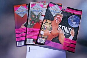 VTG Pro Wrestling Magazines Lot of 3 Wrestling WCW 90s Excellent Sting, Luger