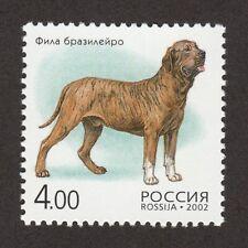 Fila Brasileiro * Int'l Dog Postage Stamp Art Collection *Gift Idea*