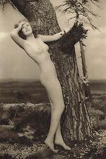 1940s Vintage John Everard Tree Female Outdoor Nude Glamour Photo Gravure Print