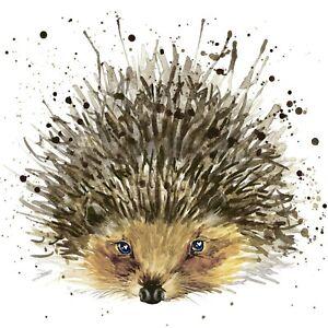 5 x Single Paper COCKTAIL Napkins/3 ply/25cm/Decoupage/Animals/Cute Hedgehog