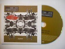 THE JOY FORMIDABLE : AUSTERE [ CD SINGLE PORT GRATUIT ]