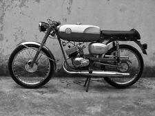 BENELLI WARDS COBRA DYNAMO FIREBALL SERVICE MANUAL 80pg for Riverside Motorcycle